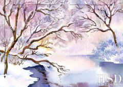 Photography Backdrop - Photo Background | Winter Scene