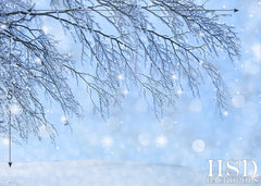 Holiday Photography Backdrop | Frost