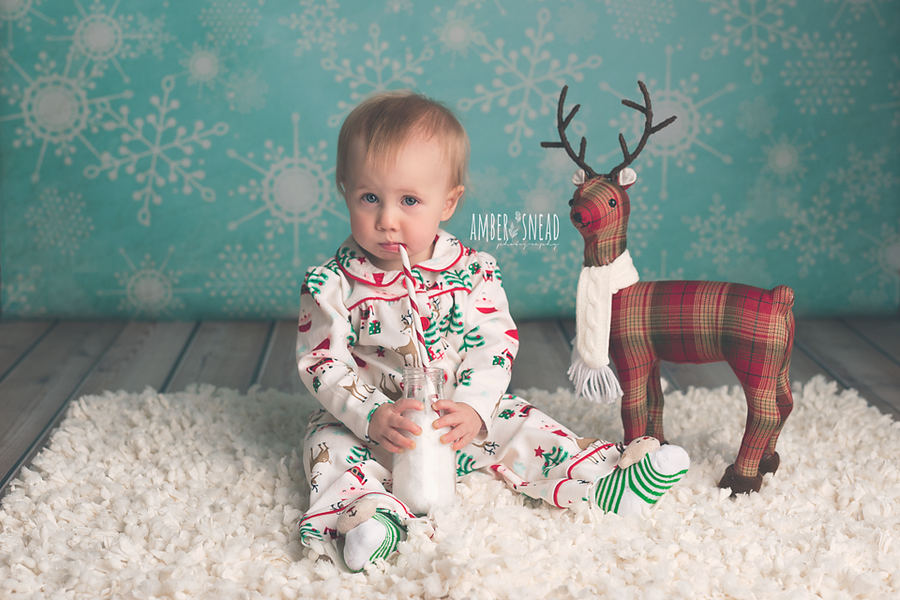 Jack Frost photography backdrop & background