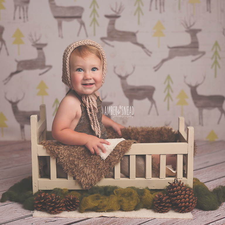 Winter Photography Backdrop | Reindeer Games