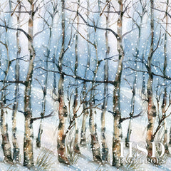 Winter Photography Backdrop Background | Winter Landscape