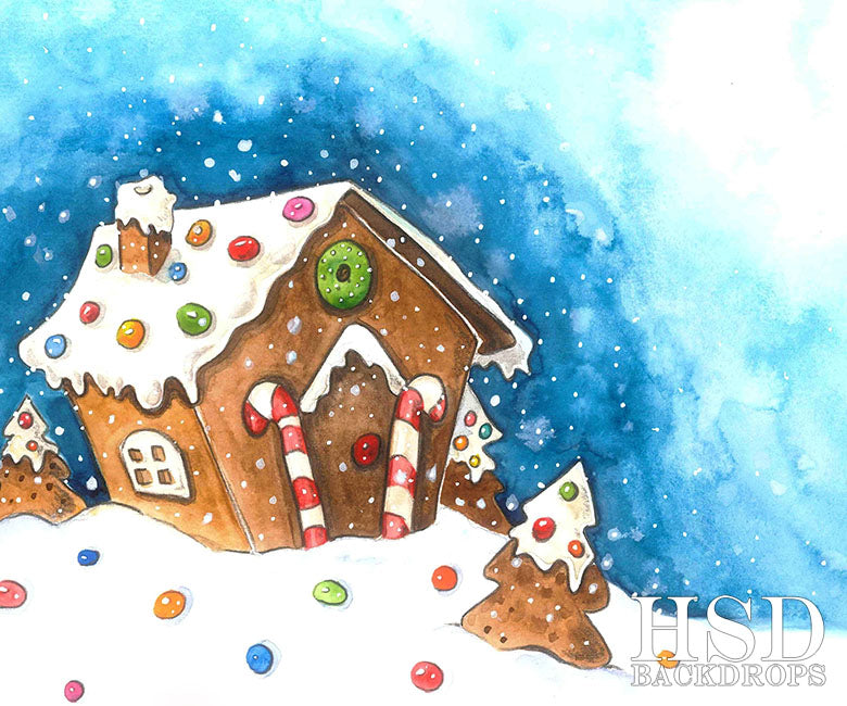 Gingerbread House photography backdrop & background