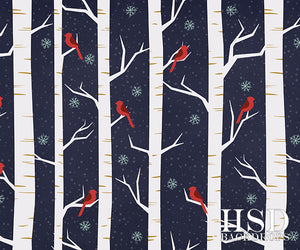 Christmas | Winter Birch Trees - HSD Photography Backdrops