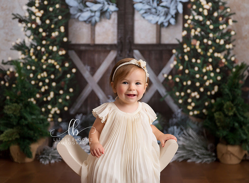 Rustic Christmas photography backdrop & background
