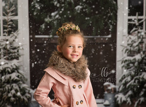 Christmas Barn Doors photography backdrop & background
