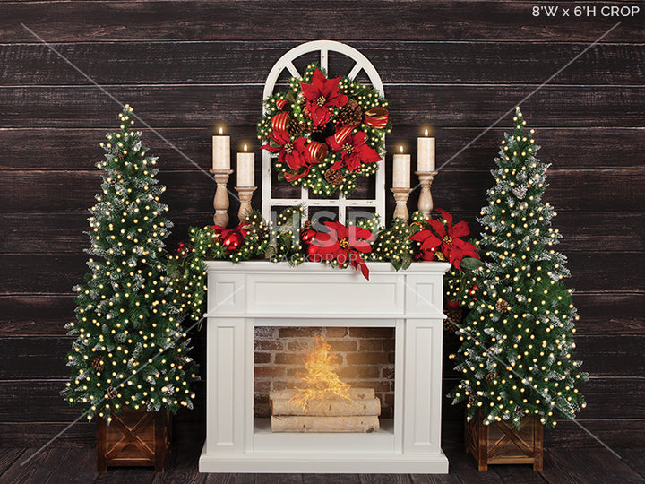 Christmas Poinsettias (large) photography backdrop & background