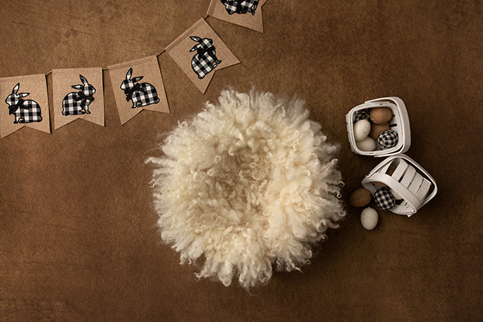 Checkered Bunny Basket III photography backdrop & background