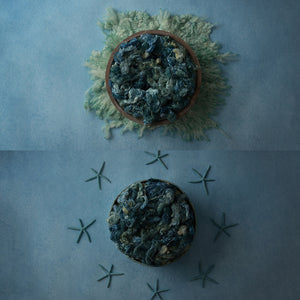 Denim Starfish Collection | Digital photography backdrop & background