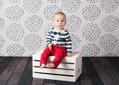 Photography Backdrop Background | Dots