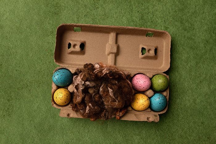 Easter Egg Carton photography backdrop & background