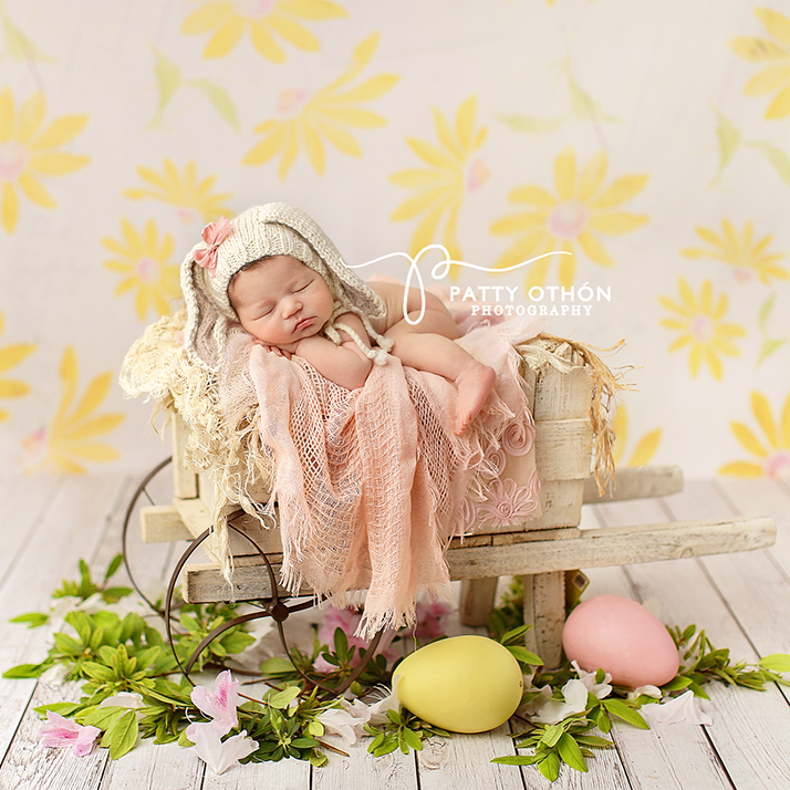 Daisy photography backdrop & background