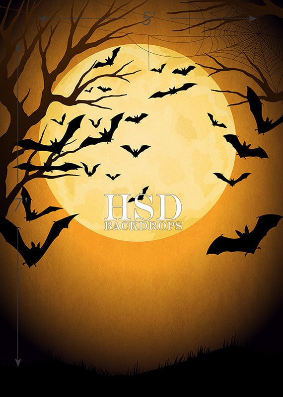 Halloween Night photography backdrop & background