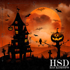 Photography Backdrop Photo Background | Haunted Halloween
