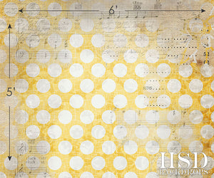 Grunge Polka Dots II photography backdrop & background