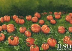 Fall Photography Backdrop Background | Pumpkin Field