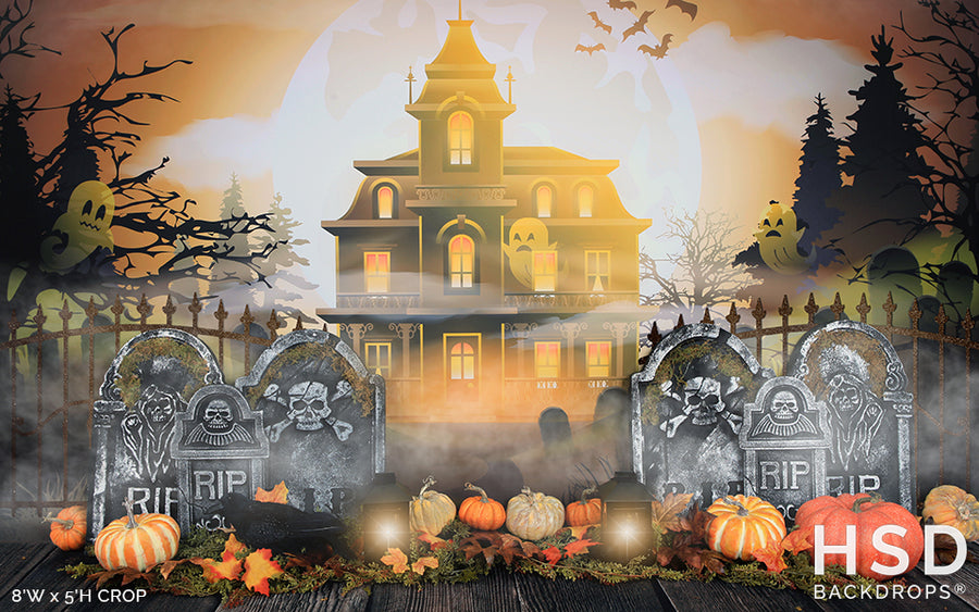 Haunted Manor photography backdrop & background