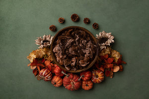 Fall Delight | Newborn Digital Backdrop photography backdrop & background
