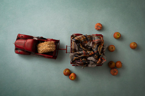Digital Backdrop | Little Red Wagon Coll. | Fall on the Farm