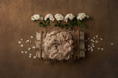 Digital Backdrop | Farmhouse II Coll. | Rustic Charm