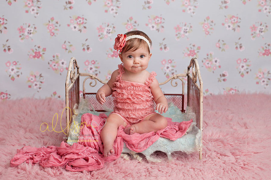 Skye photography backdrop & background