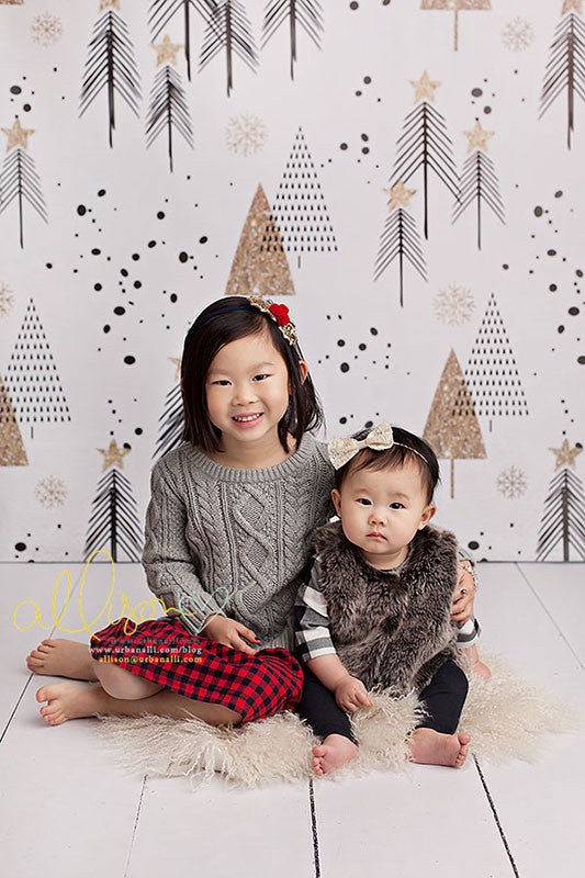 Modern Colorful Christmas Photography Backdrops Props HSD