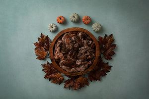 Happy Fall | Autumn Days Coll. | Digital - HSD Photography Backdrops