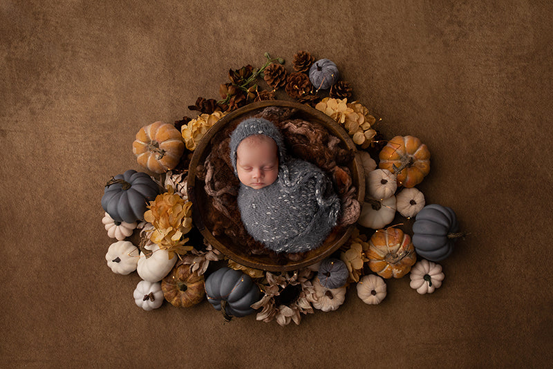 Harvest Delight II | Newborn Digital Backdrop - HSD Photography Backdrops