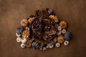 Harvest Delight II | Newborn Digital Backdrop photography backdrop & background