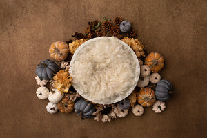Harvest Delight I | Newborn Digital Backdrop photography backdrop & background