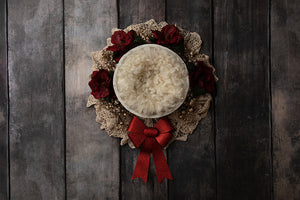 Holiday Bow Red II | Digital photography backdrop & background