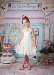 Photography Backdrop Background | Ice Cream Shoppe