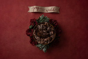 Joy Banner | Joy to the Wold Coll. | Digital - HSD Photography Backdrops