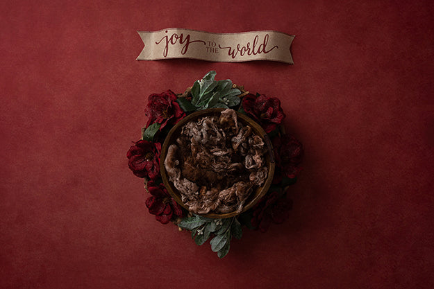 Digital Backdrop | Joy to the Wold Coll. | Joy Banner - HSD Photography Backdrops