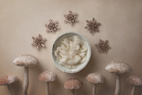 Digital Backdrop | Merry Mushrooms Coll. | Land of Snowflakes