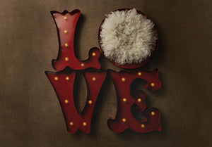Newborn Digital Backdrop | Love Marquee - HSD Photography Backdrops