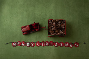 Merry Christmas Banner | Deck the Halls Coll. | Digital photography backdrop & background