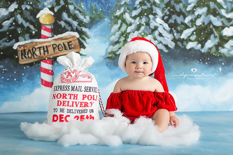 To the North Pole photography backdrop & background