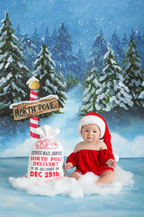 Winter Photography Backdrop | North Pole Floor