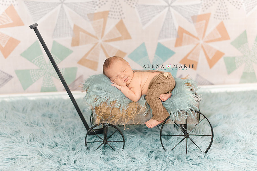 Gavin photography backdrop & background