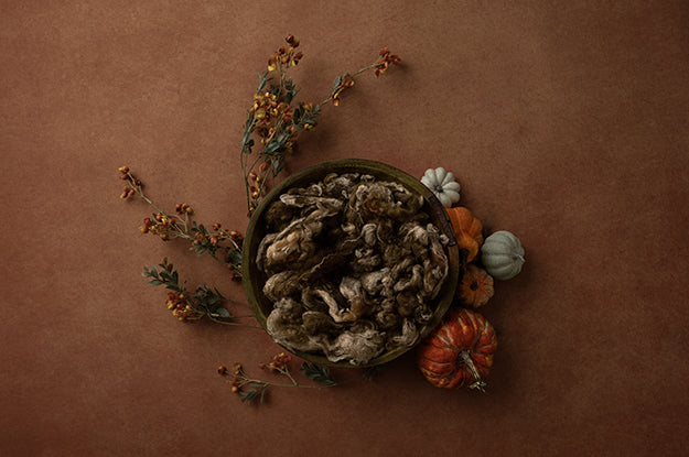 Digital Backdrop | Lovely Leaves Coll. | Pumpkin Centerpiece Brown