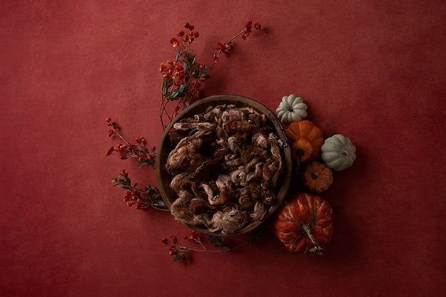 Pumpkin Centerpiece Red | Lovely Leaves Coll. | Digital - HSD Photography Backdrops