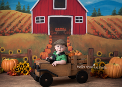 Fall Photography Backdrop Floor Drop | Country Road
