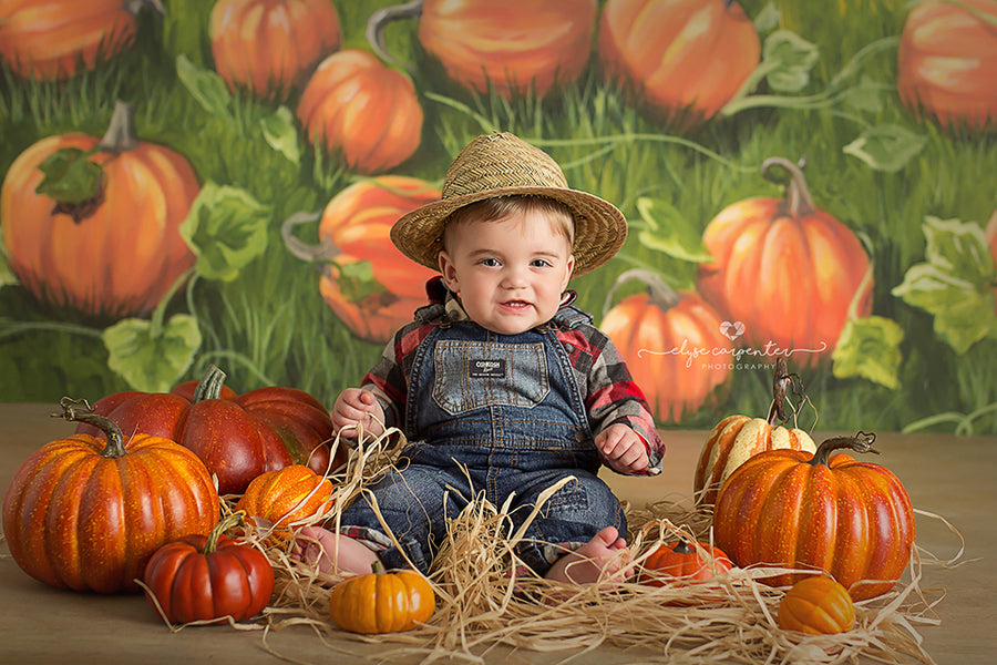 Pumpkin Field photography backdrop & background