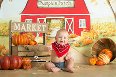 Fall Photography Backdrop Floor Drop | Jute