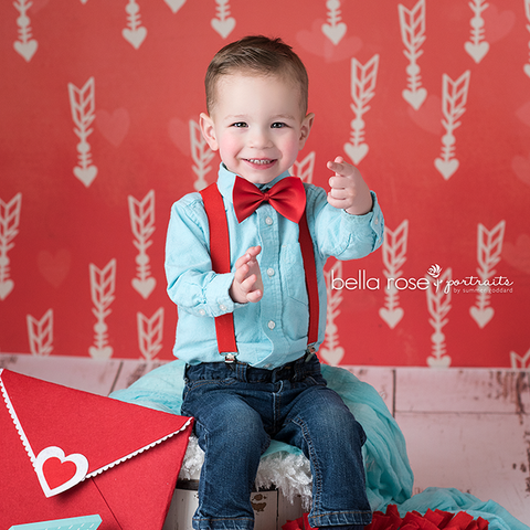 Valentine's Photography Backdrop | Crazy for You