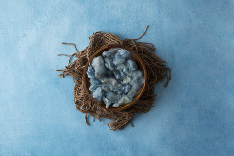 Digital Backdrop | Robins Egg Coll. | Little Hatchling