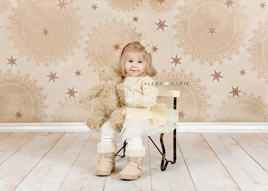 Holiday | Rustic Winter - HSD Photography Backdrops