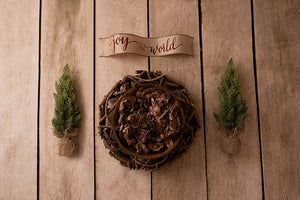 Rustic Spruce I | Christmas Plaid Coll. | Digital - HSD Photography Backdrops