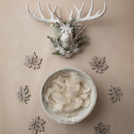 Digital Backdrop | Rustic Chic Winter Coll. | Rustic Wonderland - HSD Photography Backdrops