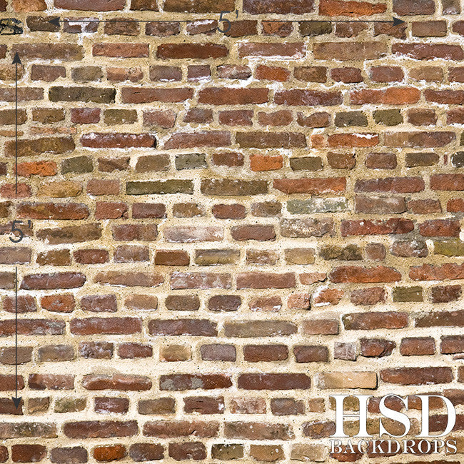 Old Brick Wall photography backdrop & background